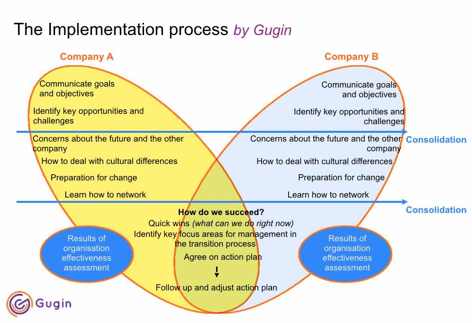 Cultural Integration Process by Gugin