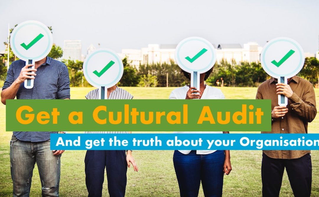 Cultural Audit – Get the truth about your organisation