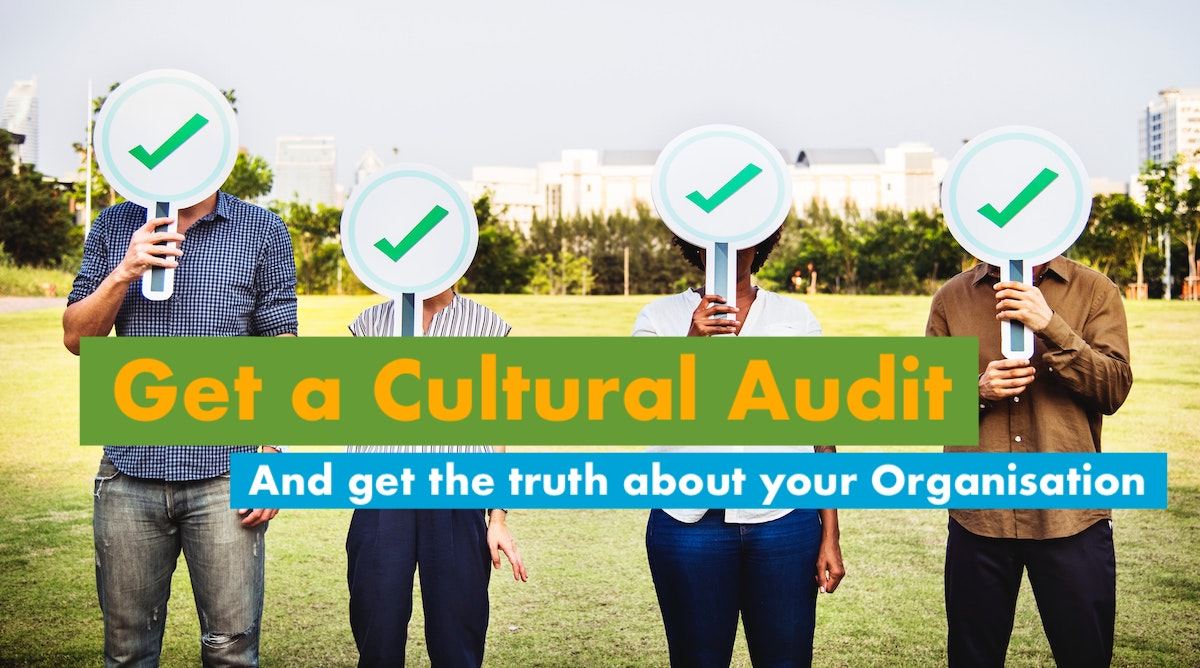Cultural Audit by Gugin