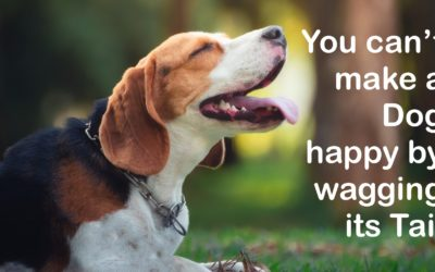 You can't make a dog happy by wagging its tail