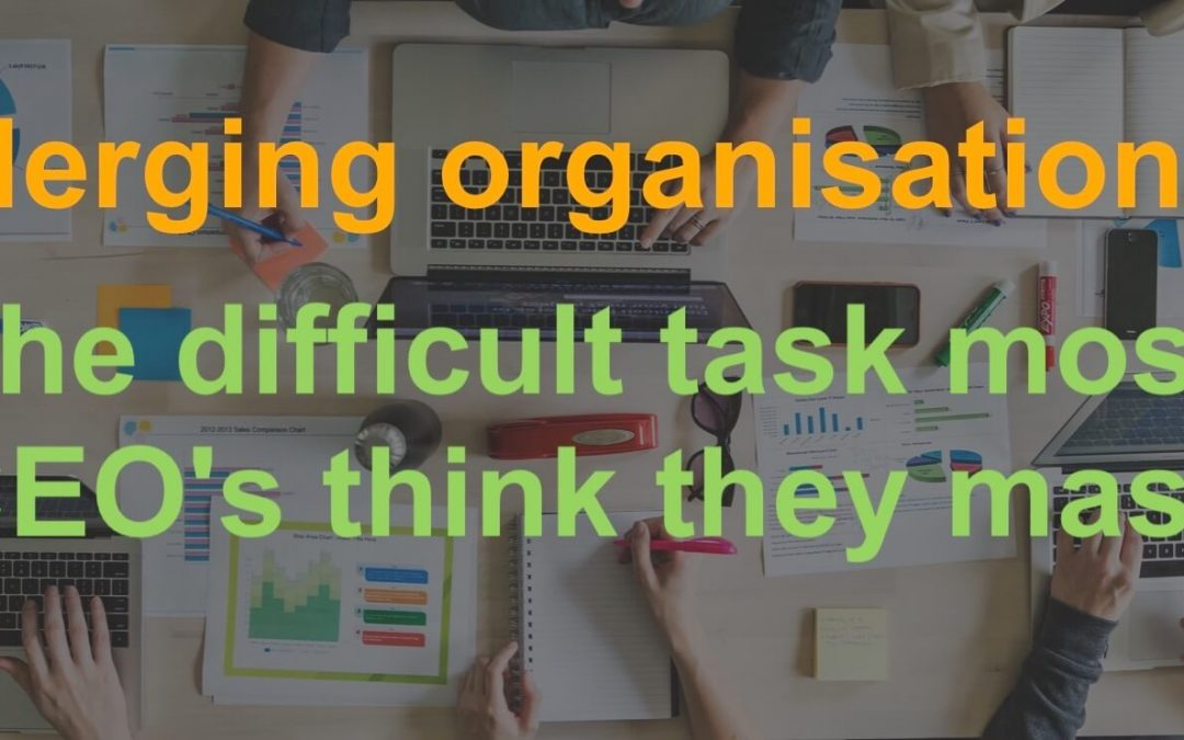Merging organisations. The difficult task most CEO's think they master